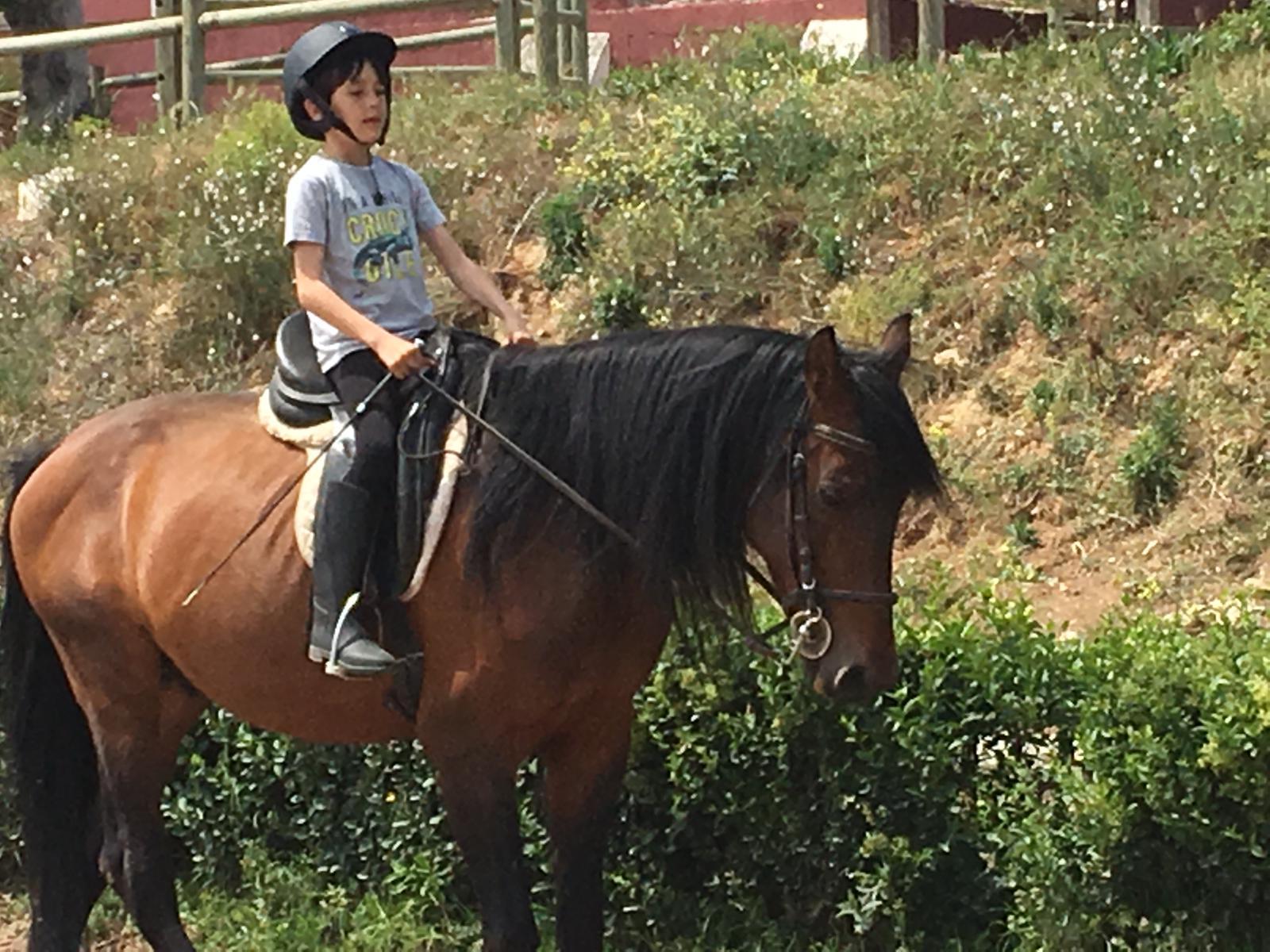 Equitación para los mas peques